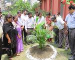 Plantation Programme by Officers and Staff3
