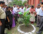 Plantation Programme by Officers and Staff4