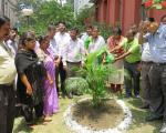 Plantation Programme by Officers and Staff5